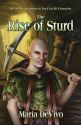 The Rise of Sturd